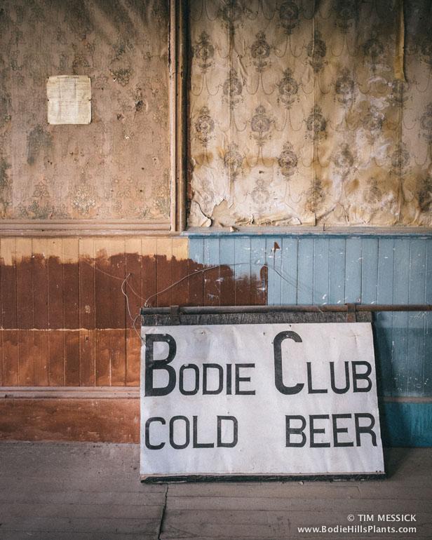 Bodie Club: Cold Beer
